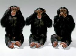 Le tre scimmie sagge